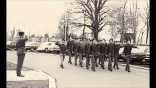 The Sprig Of Shillelagh & Garryowen  - The Ulster Defence Regiment