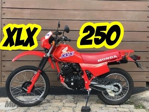 Xxx Mp4 HONDA XLX 250 A TRAIL QUE FEZ HISTÓRIA 3gp Sex