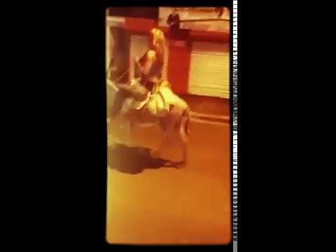 Xxx Mp4 Mujer Anda En Su Burro Como Medio De Transporte Santo Domingo 3gp Sex