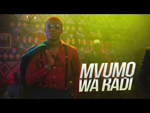 Xxx Mp4 ALIKIBA Mvumo Wa Radi Official Video 3gp Sex