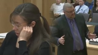Jodi Arias' Defense Lawyer Nurmi Makes Argument For Manslaughter: Jodi Snapped in a Heat of Passion