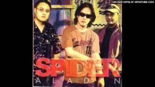 spider kau matahari