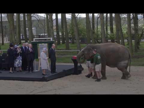 Xxx Mp4 The Queen Feeds Elephants At Whipsnade Zoo 3gp Sex