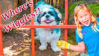 ASSISTANT Spooky Search for Wiggles With Mickey Mouse and Paw Patrol Adventre Video