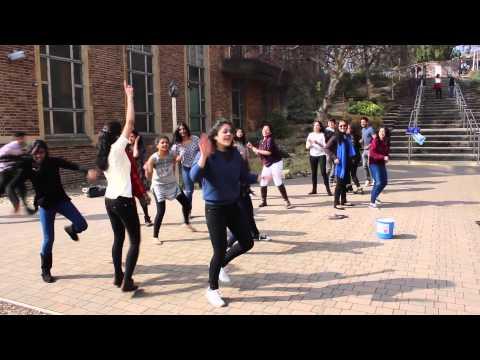 Xxx Mp4 Spring It On Bhangra Flash Mob In Bristol 3gp Sex