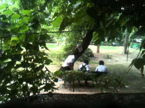 FUNNY delhi school bunkers VIDEO