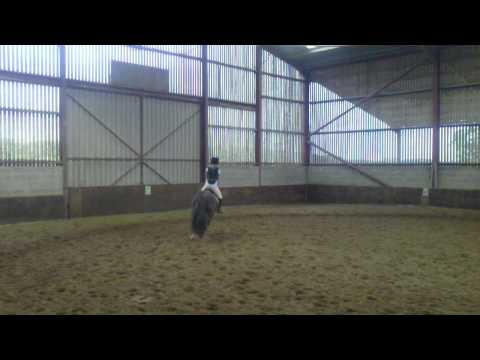Xxx Mp4 Jumping A Couple Of Jumps On Rocko MP4 3gp Sex