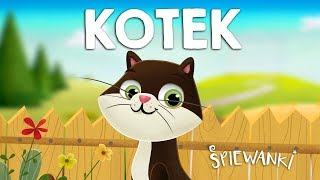 KOTEK – Śpiewanki.tv – piosenki dla dzieci
