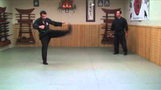 Ninjutsu Training Drill: Keri (Kicks) Ninja Training Video Blog