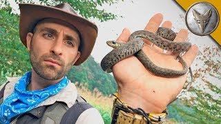 CAUTION! A Venomous and Poisonous Snake!