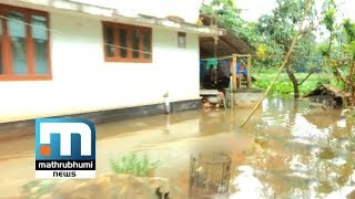 Low Lying Areas Flooded As Water Level Increased In Periyar   Mathrubhumi News