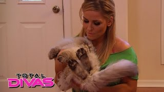 Natalya is stunned by her cats' bad haircuts: Total Divas, March 8, 2015