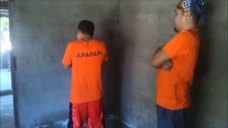 Apapap City Jail - The Premature Boys