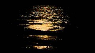Romantic Myrtle Beach Ocean at Night