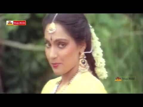 Donga Mogudu Super Hit Song - Chiranjeevi, Madhavi, Radhika, Bhanu Priya