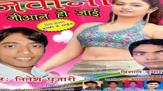 Bhojpuri Hot Songs 2015 New || Dil Leke Ja Rahe Ho || Nitesh Pujari
