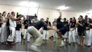 Mestre Ralil- Raizes do Brasil