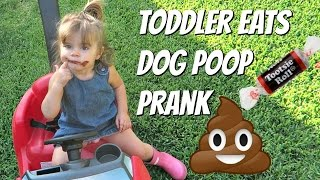 TODDLER EATS FAKE DOG POOP PRANK -  DAD PRANKS MOM (Mom Flips Out!)