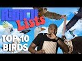 Ridicu-Lists: Top Ten Birds