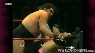 Bret Hart vs  Andre the Giant  |  Milan  04/10/89