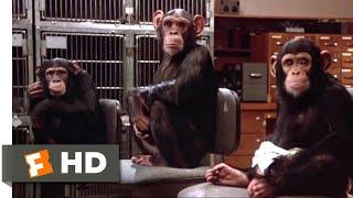 Back to School (1986) - Lab Monkeys Scene (8/12)   Movieclips