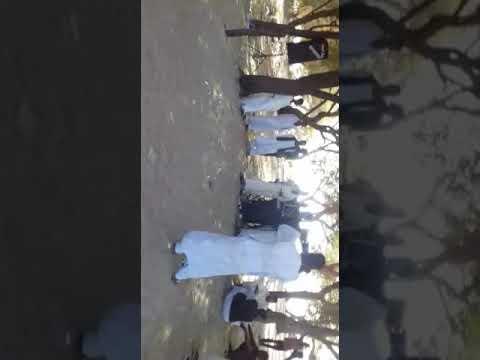 Xxx Mp4 محمد نايل قلبي سلمتو 3gp Sex