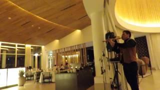 Espíritu del Águila Volando - MALLKU JOSÉ - Hotel Libertador Paracas