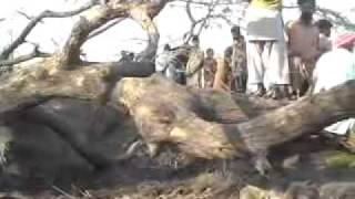 Pahari Pur Incidence Sangla Hill, Ahle Hadith vs Brelwi, Part 1 of 7