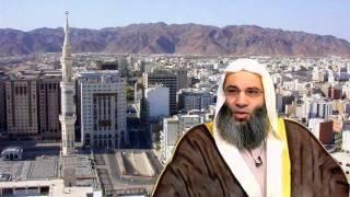 المهدي المنتظر من هو وكيف سيظهر والعلامة التي تدل على أنه المهدي المنتظر. الشيخ محمد حسان