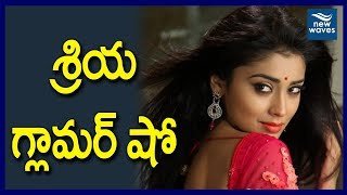 Actress Shriya Saran Glamour Show In Paisa Vasool Audio Success Meet | New Waves