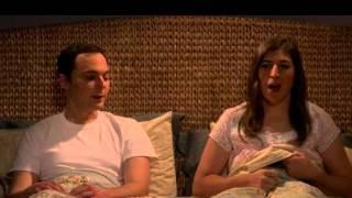 The Big Bang Theory Season 9 Episode 11
