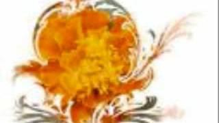 Nazrul Song - Chomke Chomke Dher