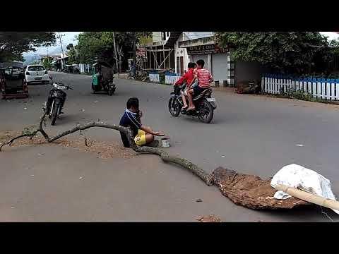 Gara Gara Pohon Beringin Tumbang