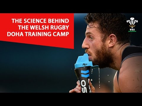 The science behind the Welsh Rugby Doha training camp   WRU TV
