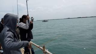 strike ikan toka toka, mancing bagan ( PRM fishing club )