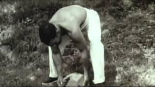 Rocky Marciano Tribute (HD)