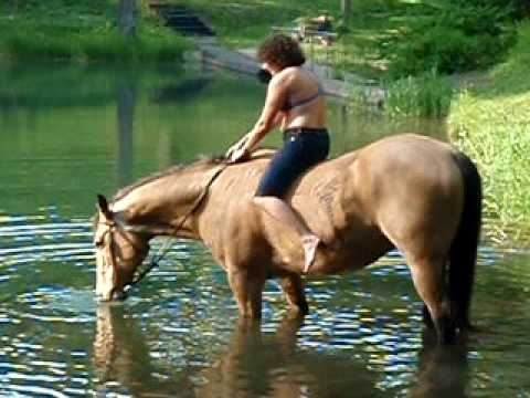 Xxx Mp4 Horse Lady Gone Wild Buck Goes Swimming Part 1 3gp Sex