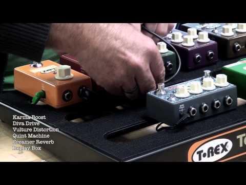 Building a T Rex pedal board