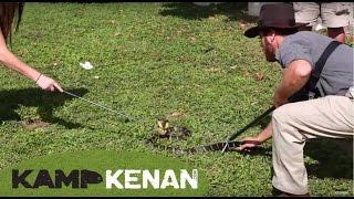 Dangerous Chinese King Cobra Handling : Kamp Kenan Bonus