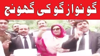 Go Nawaz Go Chants by Lawyers at Mall Road in Lahore