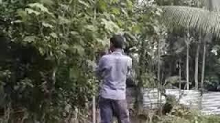 Some funny _avijit hd_kiranmala music™studio=TSK