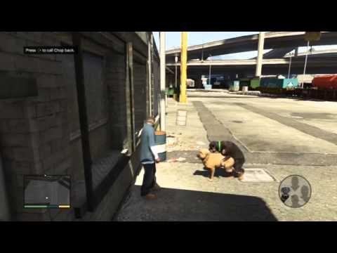 Xxx Mp4 GTA 5 Dog Sex 3gp Sex