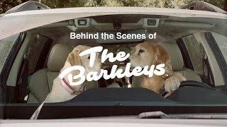 Subaru Dog Tested I Behind the Scenes