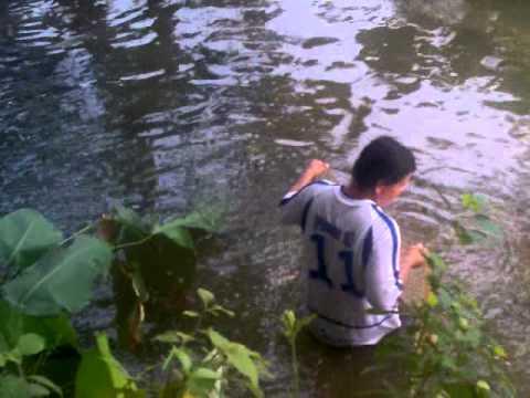 Pesca en los Llanos