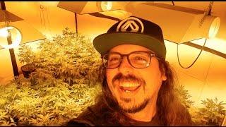 Celebrando 420 (día de la marihuana) bien mierda - vlog 154