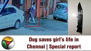 VISUALS | 2 Dog Saves Girl's Life in Chennai