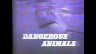 Wild Wild World Of Animals - Ep. 114 - Dangerous Animals