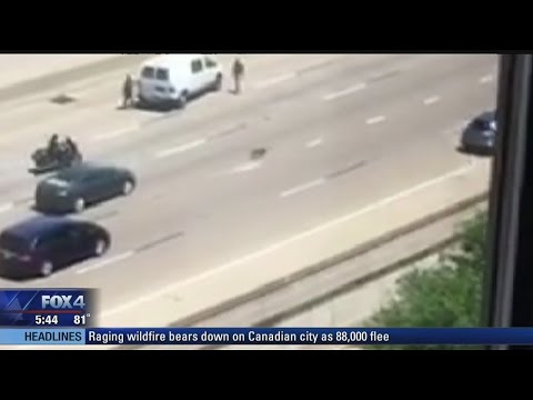 Fort Worth officer rescues dog from freeway