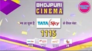 Bhojpuri Cinema Tv Available on Tata Sky Channel on 1115 II Bhojpuri Media