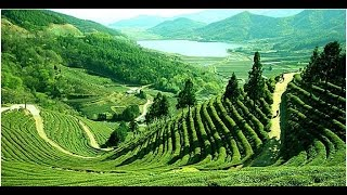 Top 10 attractive natural tourist place in Bangladesh